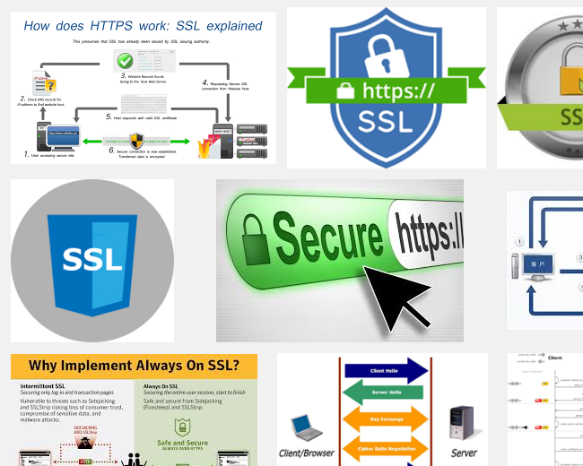 ssl_check_wp