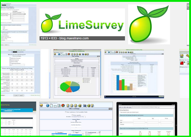 installatron_LimeSurvey_wp