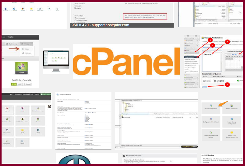 how_to_change_cpanel_to_another_server_issue_wp