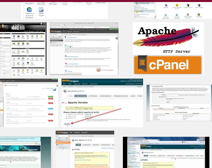 cpanel_sub_domain_wp