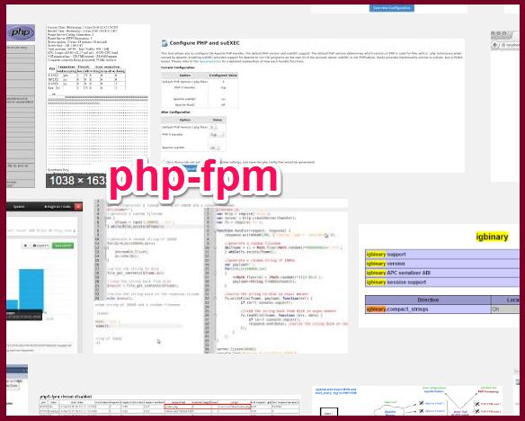 php-fpm_wp2