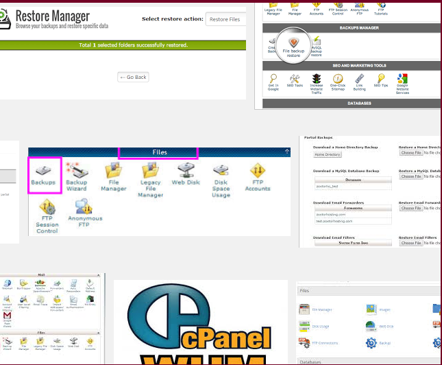 cpanel_restore_wp