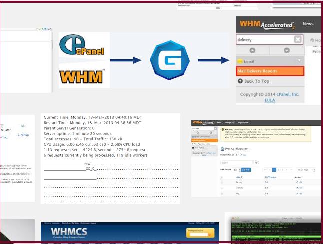 server 的除錯實錄 (關掉whm不需使用的監控功能)